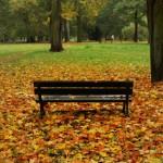 Tradycyjny zestaw październikowy
