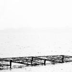 W delcie rzeki: Depresja