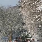 Klasyka w zimowej scenerii